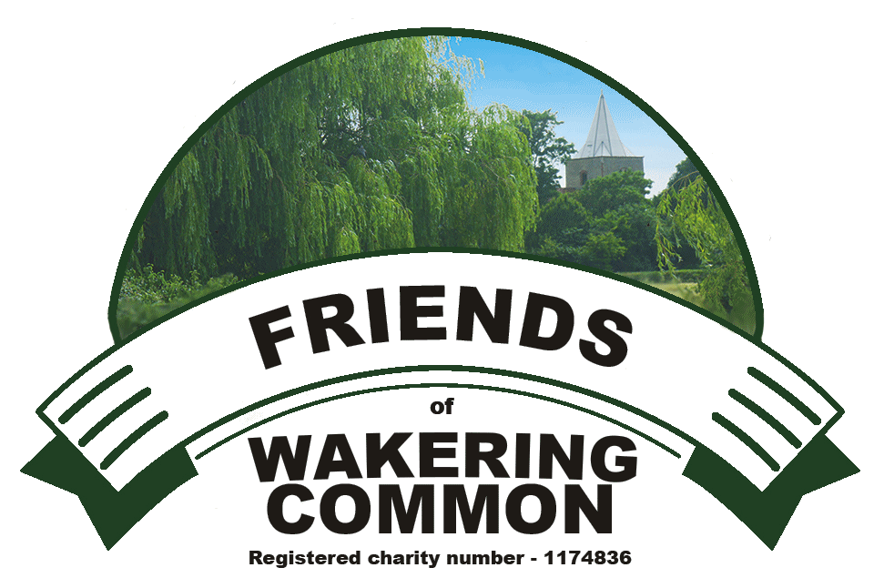 Friends of Wakering Common